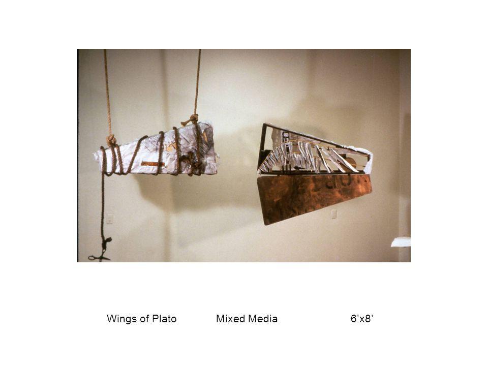 Wings of Plato Mixed Media 6'x8'