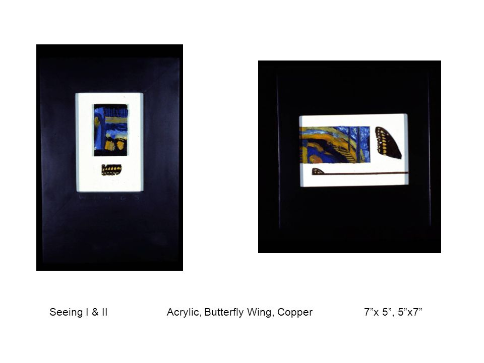 """Seeing I & II Acrylic, Butterfly Wing, Copper 7""""x 5"""", 5""""x7"""""""