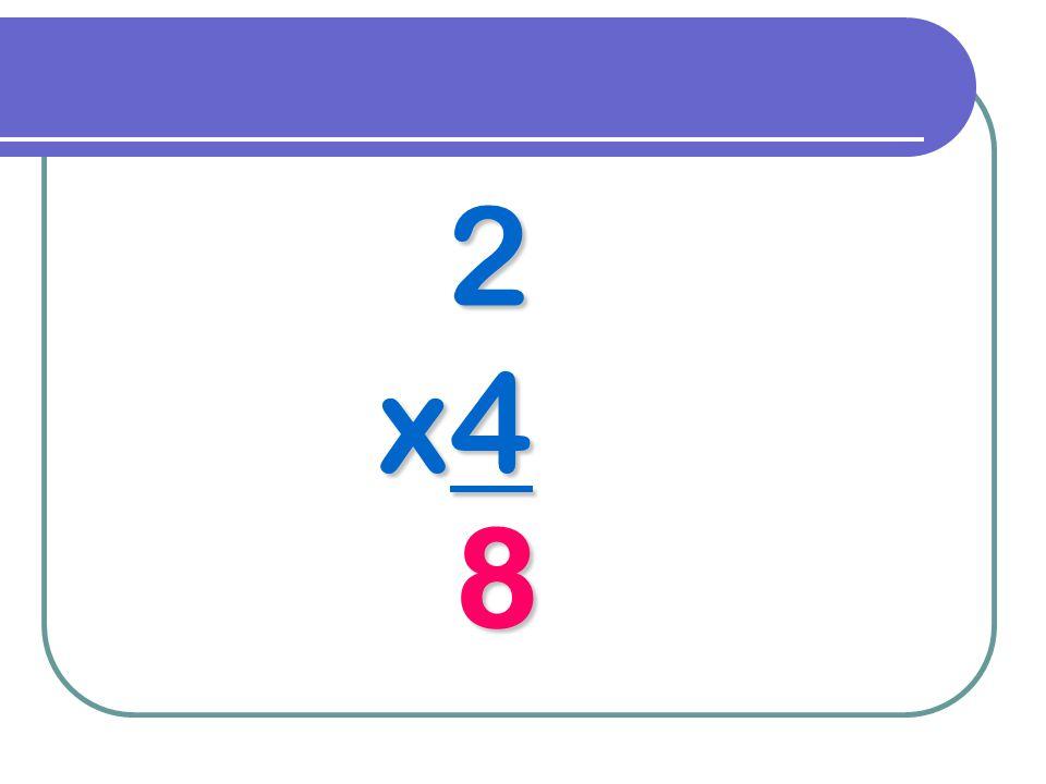 2 x4 8