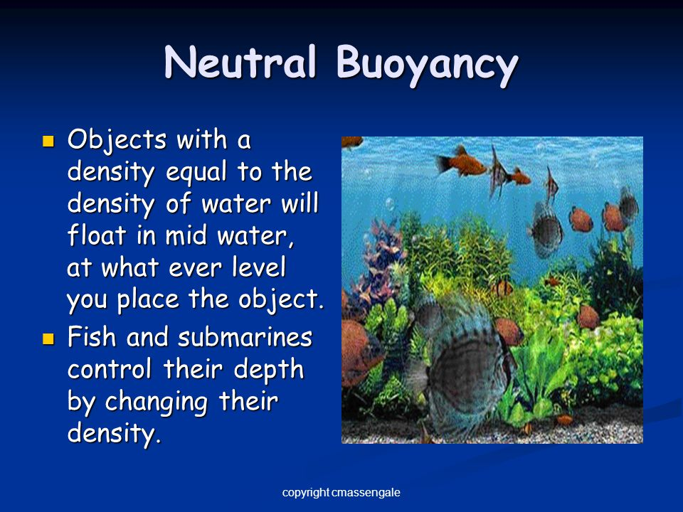 Neutral Buoyancy Objects with a density equal to the density of water will float in mid water, at what ever level you place the object. Objects with a