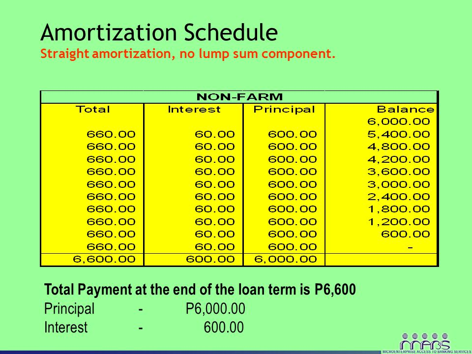 Amortization Schedule Straight amortization, no lump sum component.