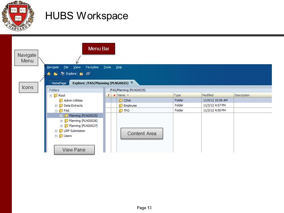 Page 13 HUBS Workspace Menu Bar Content Area View Pane Navigate Menu Icons