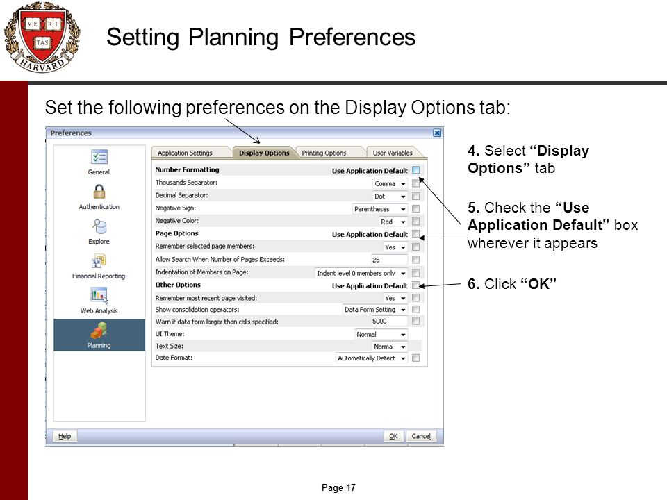 Page 17 Setting Planning Preferences Set the following preferences on the Display Options tab: 4.