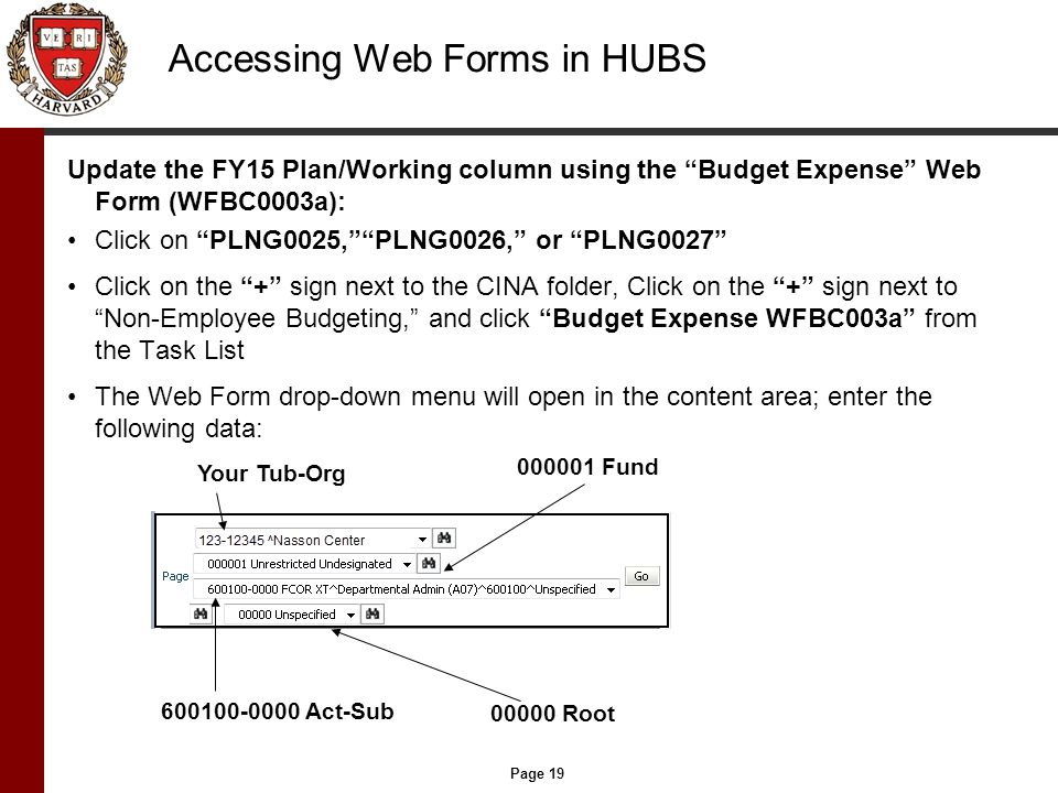 Page 19 Accessing Web Forms in HUBS Update the FY15 Plan/Working column using the Budget Expense Web Form (WFBC0003a): Click on PLNG0025, PLNG0026, or PLNG0027 Click on the + sign next to the CINA folder, Click on the + sign next to Non-Employee Budgeting, and click Budget Expense WFBC003a from the Task List The Web Form drop-down menu will open in the content area; enter the following data: Your Tub-Org 000001 Fund 600100-0000 Act-Sub 00000 Root