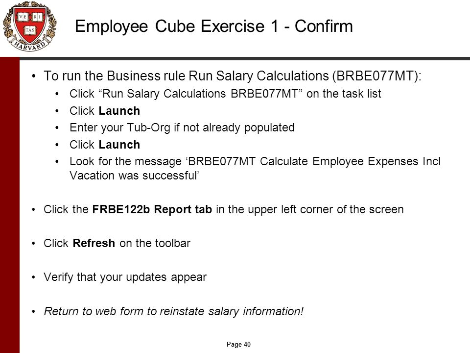 Page 40 Employee Cube Exercise 1 - Confirm To run the Business rule Run Salary Calculations (BRBE077MT): Click Run Salary Calculations BRBE077MT on the task list Click Launch Enter your Tub-Org if not already populated Click Launch Look for the message 'BRBE077MT Calculate Employee Expenses Incl Vacation was successful' Click the FRBE122b Report tab in the upper left corner of the screen Click Refresh on the toolbar Verify that your updates appear Return to web form to reinstate salary information!