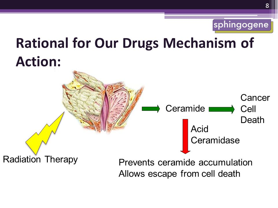 Rational for Our Drugs Mechanism of Action: Radiation Therapy Ceramide Cancer Cell Death Acid Ceramidase Prevents ceramide accumulation Allows escape