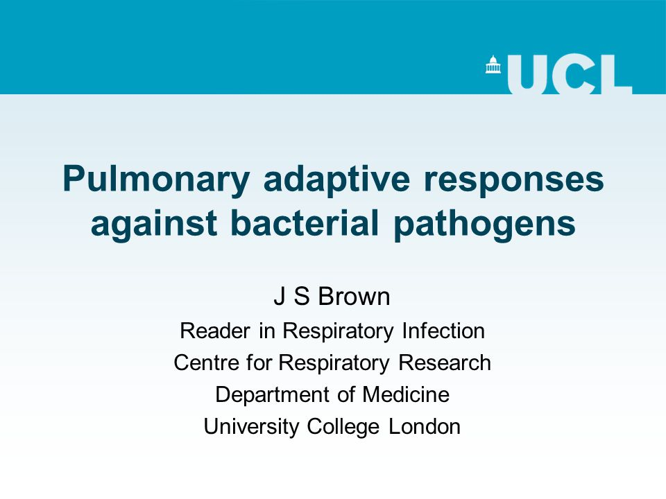 Pulmonary adaptive responses against bacterial pathogens J S Brown Reader in Respiratory Infection Centre for Respiratory Research Department of Medicine University College London