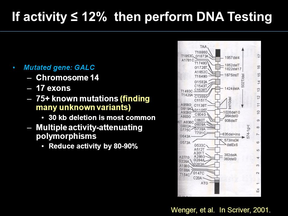 If activity ≤ 12% then perform DNA Testing Mutated gene: GALC –Chromosome 14 –17 exons –75+ known mutations (finding many unknown variants) 30 kb dele