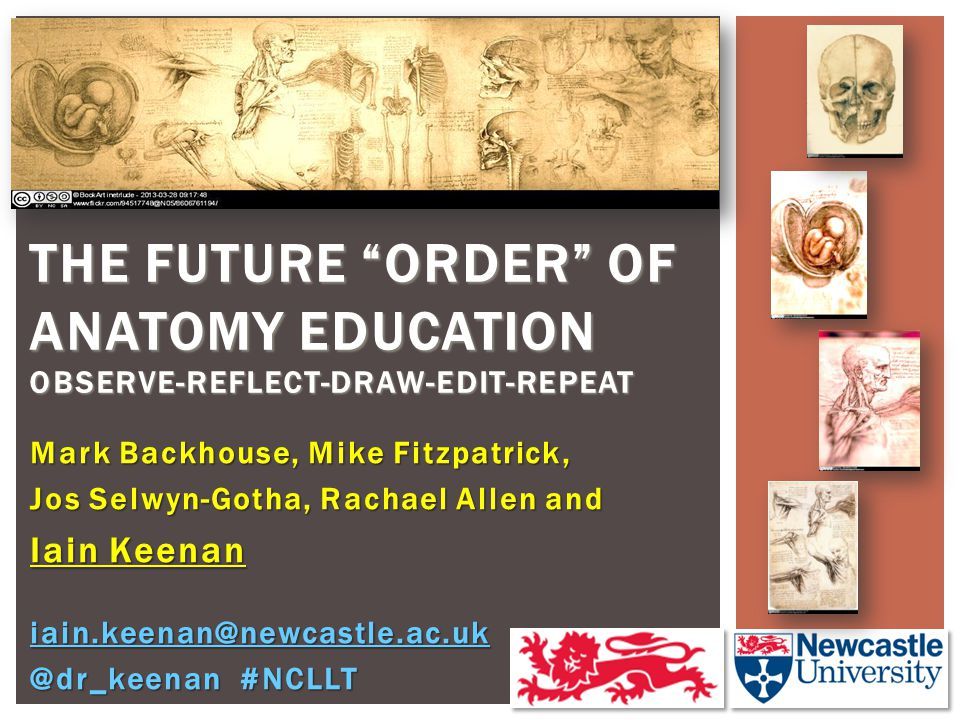 "Mark Backhouse, Mike Fitzpatrick, Jos Selwyn-Gotha, Rachael Allen and Iain Keenan THE FUTURE ""ORDER"" OF ANATOMY EDUCATION OBSERVE-REFLECT-DRAW-EDIT-RE"