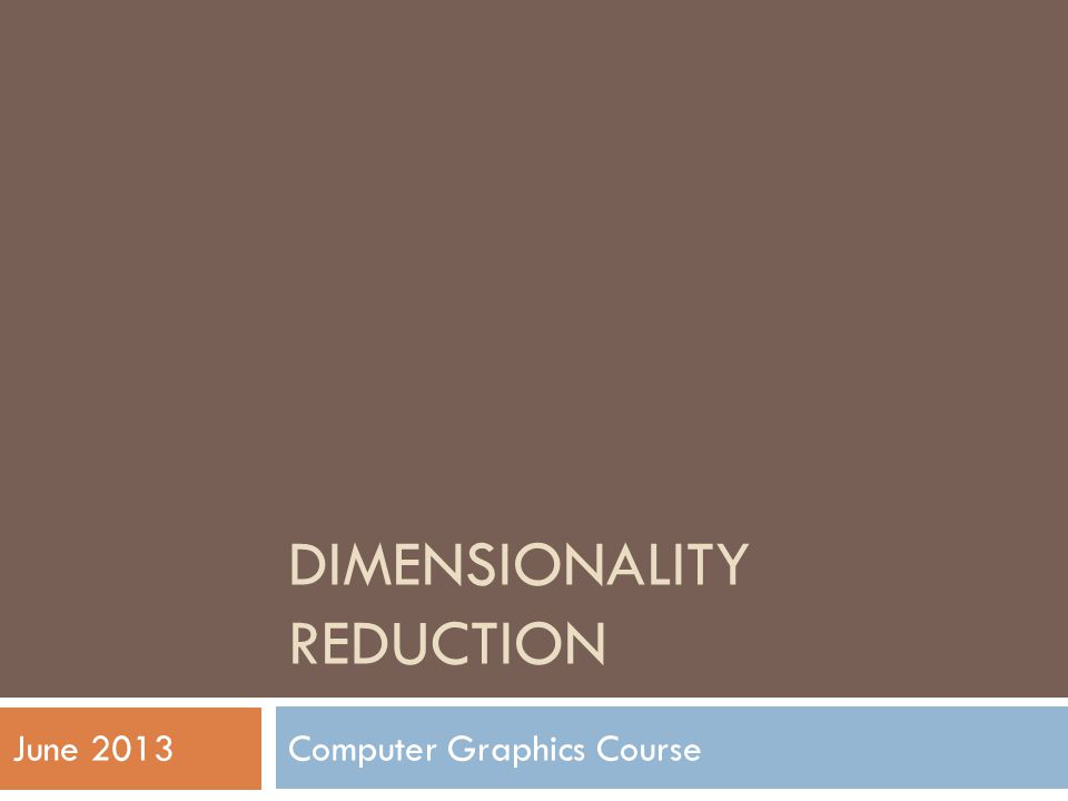 DIMENSIONALITY REDUCTION Computer Graphics CourseJune 2013