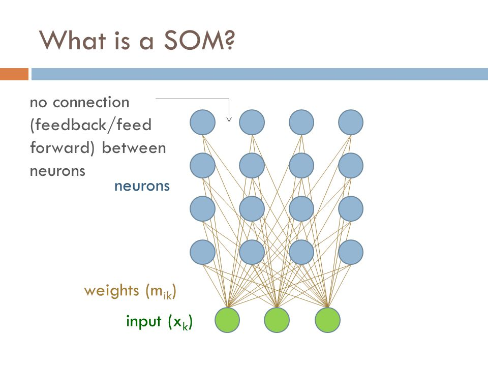 What is a SOM.