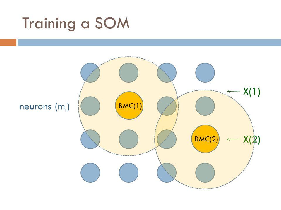 Training a SOM neurons (m i ) X(1) BMC(1) X(2) BMC(2)