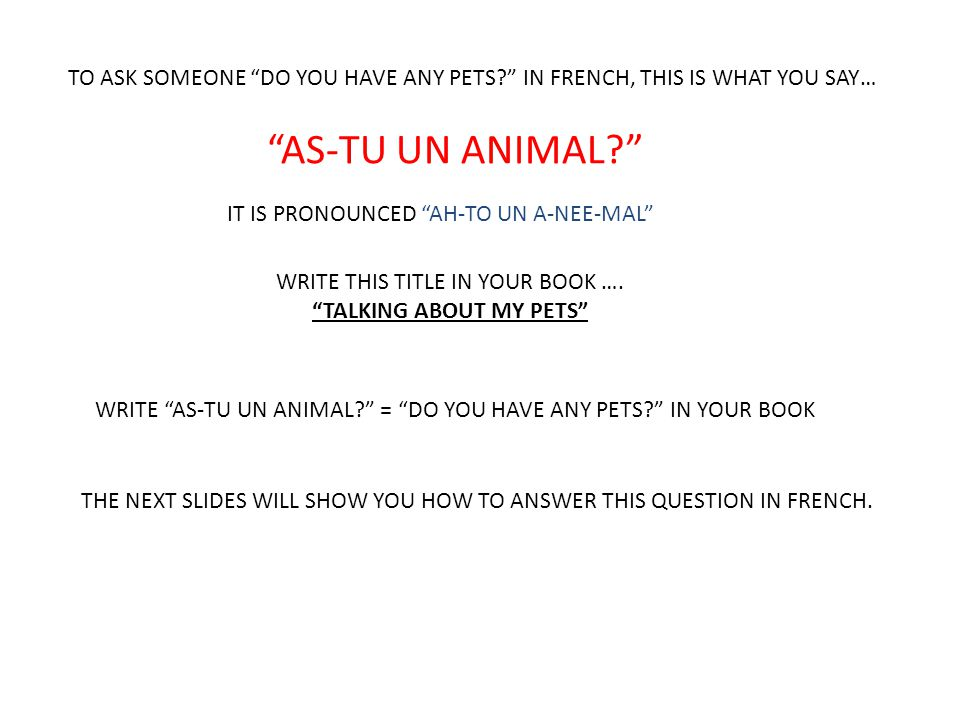 """TO ASK SOMEONE """"DO YOU HAVE ANY PETS?"""" IN FRENCH, THIS IS WHAT YOU SAY… """"AS-TU UN ANIMAL?"""" IT IS PRONOUNCED """"AH-TO UN A-NEE-MAL"""" WRITE THIS TITLE IN Y"""