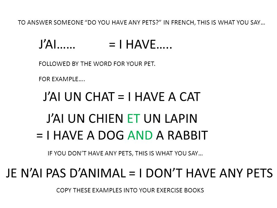 """TO ANSWER SOMEONE """"DO YOU HAVE ANY PETS?"""" IN FRENCH, THIS IS WHAT YOU SAY… J'AI…… = I HAVE….. FOLLOWED BY THE WORD FOR YOUR PET. FOR EXAMPLE…. J'AI UN"""
