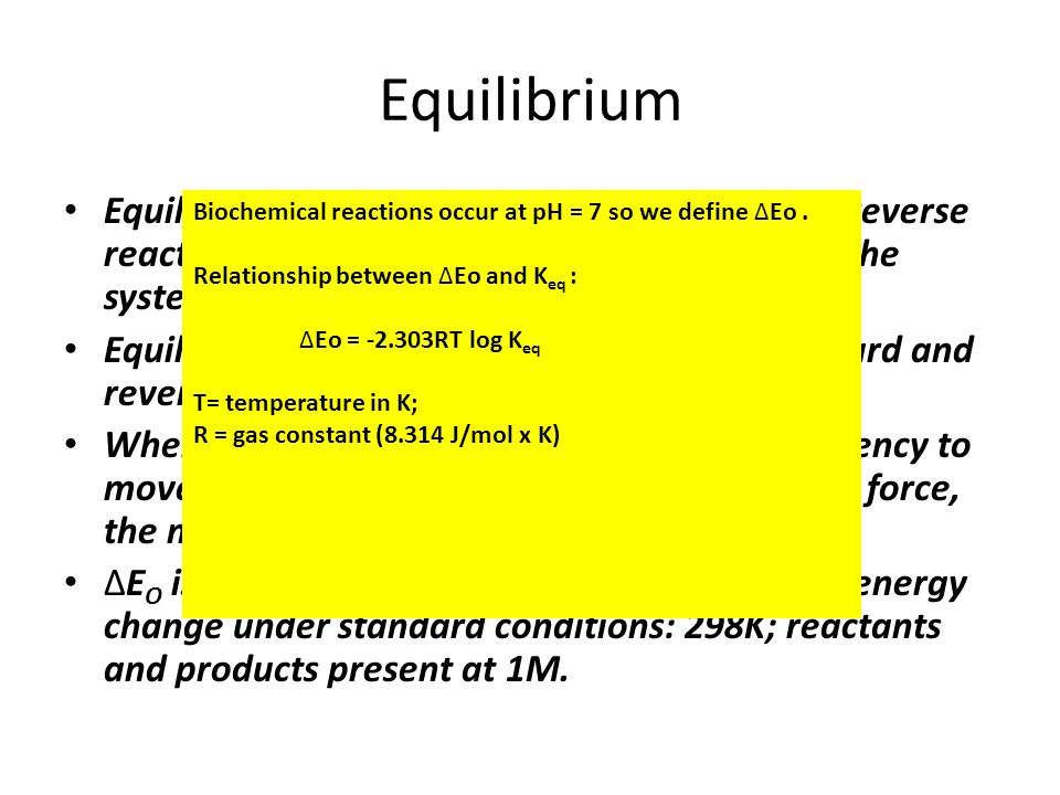Equilibrium Equilibrium is when the rates of forward and reverse reactions are equal and no further change in the system occurs.