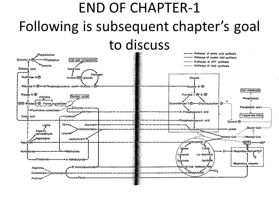 END OF CHAPTER-1 Following is subsequent chapter's goal to discuss