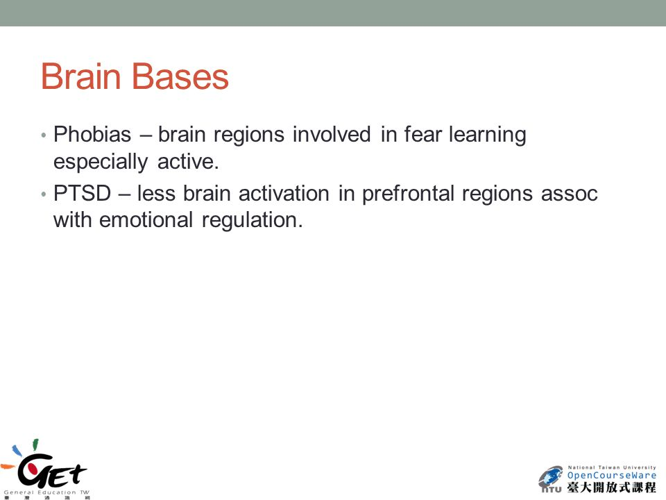 Brain Bases Phobias – brain regions involved in fear learning especially active.