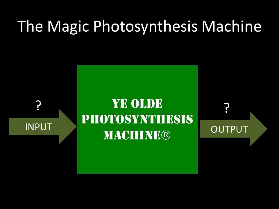 The Magic Photosynthesis Machine YE OLDE PHOTOSYNTHESIS MACHINE  YE OLDE PHOTOSYNTHESIS MACHINE  ? INPUT OUTPUT ?