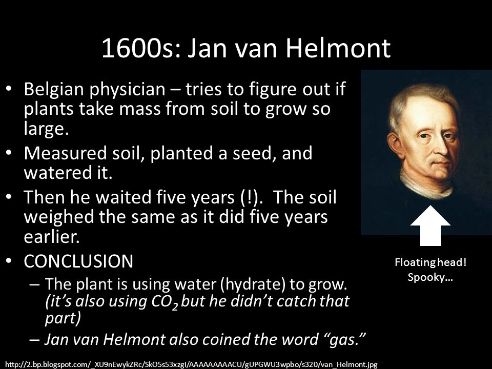 1600s: Jan van Helmont Belgian physician – tries to figure out if plants take mass from soil to grow so large.