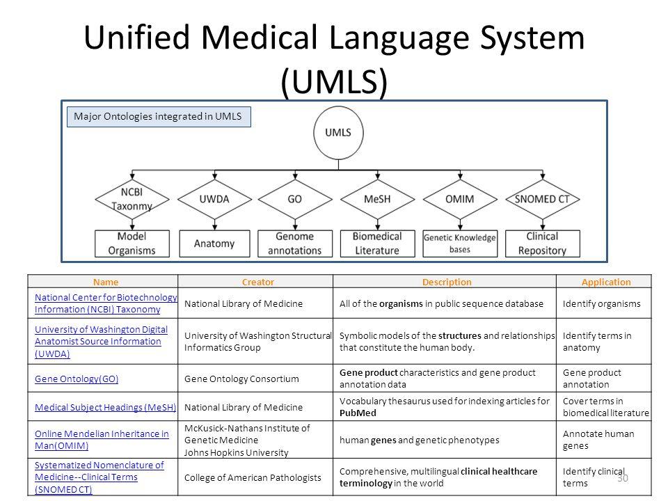 Unified Medical Language System (UMLS) 30 NameCreatorDescriptionApplication National Center for Biotechnology Information (NCBI) Taxonomy National Lib