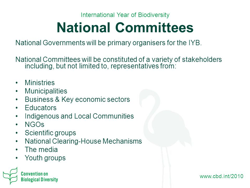 www.cbd.int/2010 International Year of Biodiversity National Committees National Governments will be primary organisers for the IYB.