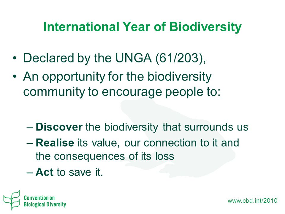 www.cbd.int/2010 International Year of Biodiversity Declared by the UNGA (61/203), An opportunity for the biodiversity community to encourage people to: –Discover the biodiversity that surrounds us –Realise its value, our connection to it and the consequences of its loss –Act to save it.