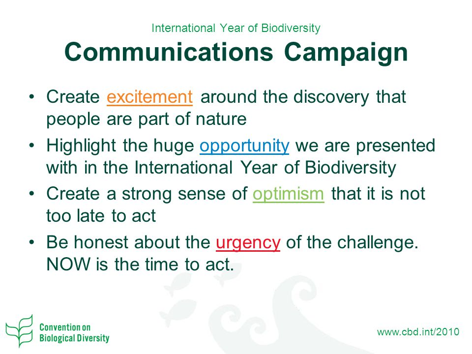 www.cbd.int/2010 International Year of Biodiversity Communications Campaign Create excitement around the discovery that people are part of nature Highlight the huge opportunity we are presented with in the International Year of Biodiversity Create a strong sense of optimism that it is not too late to act Be honest about the urgency of the challenge.
