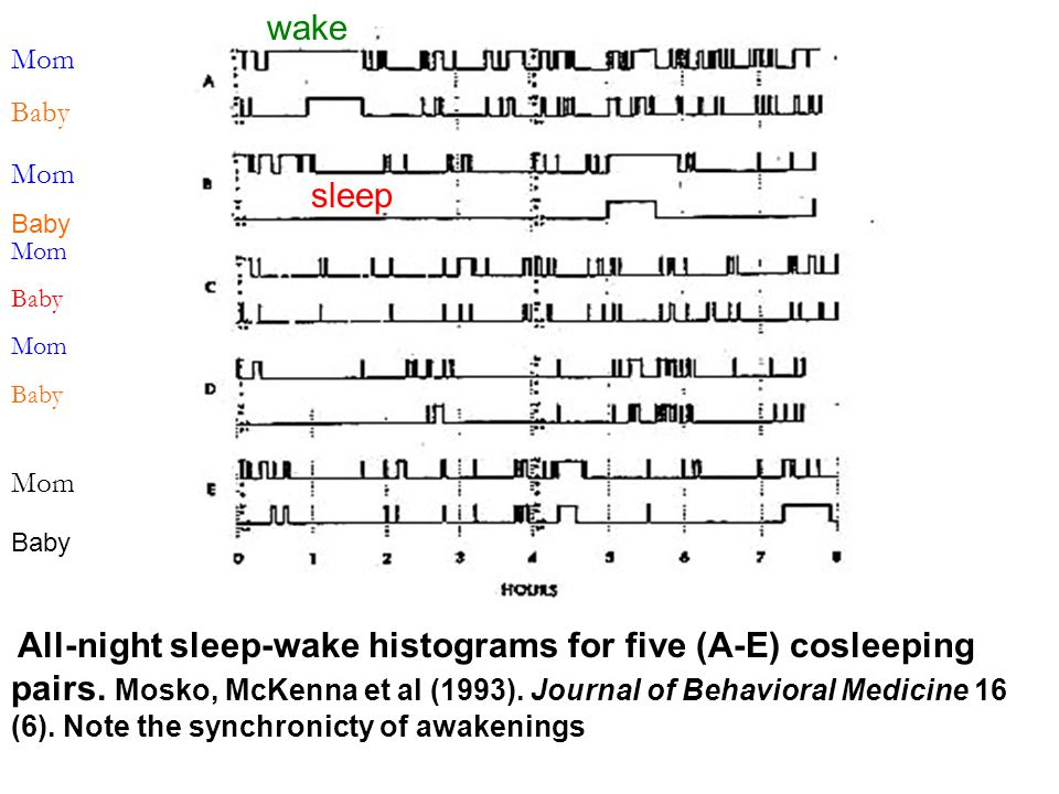 All-night sleep-wake histograms for five (A-E) cosleeping pairs. Mosko, McKenna et al (1993). Journal of Behavioral Medicine 16 (6). Note the synchron