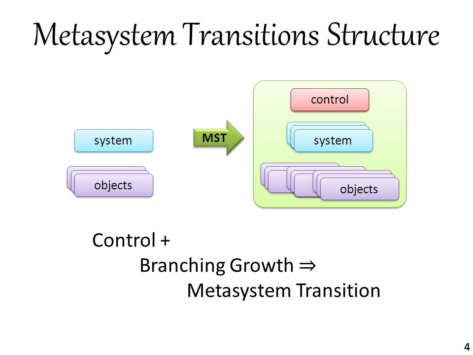 Metasystem Transitions Structure Control + Branching Growth ⇒ Metasystem Transition MST metasystem system objects control system objects system object