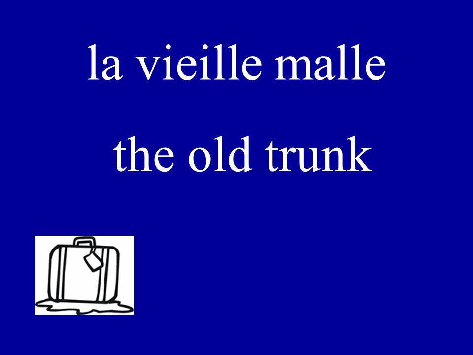 LA VIEILLE MALLE