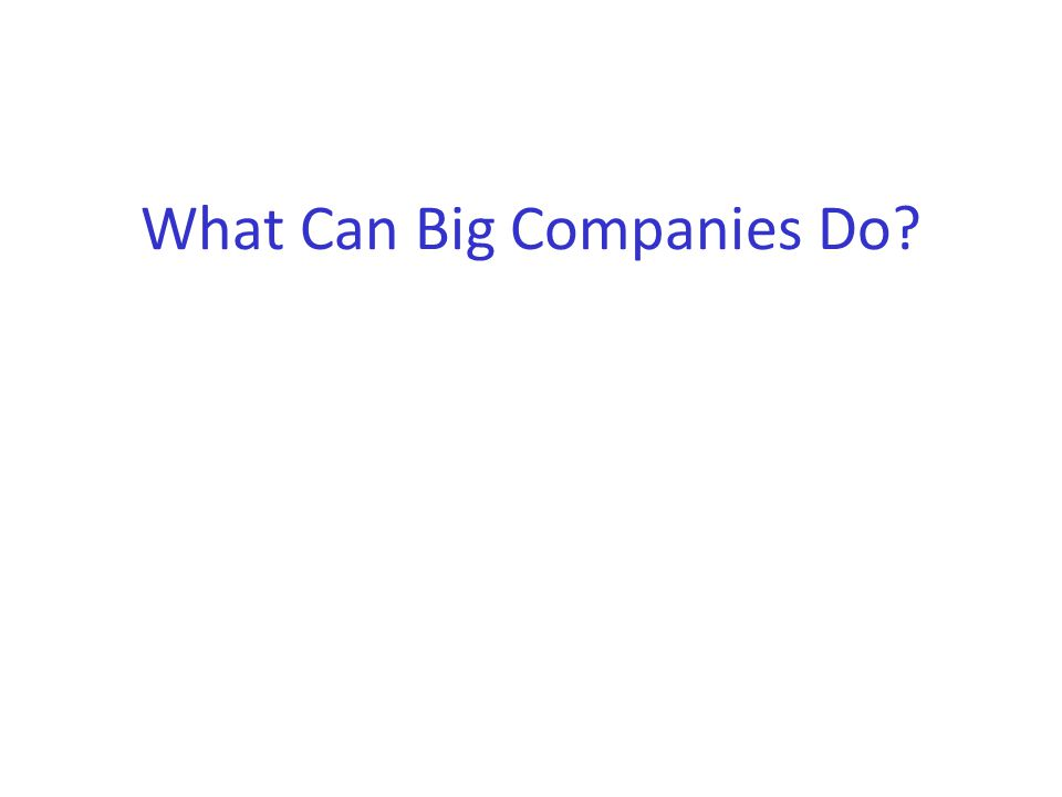 What Can Big Companies Do?