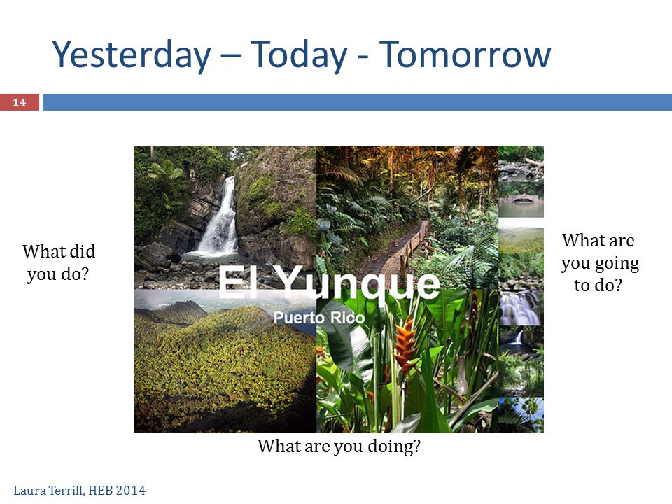 What did you do? Yesterday – Today - Tomorrow Laura Terrill, HEB 2014 What are you doing? What are you going to do? 14
