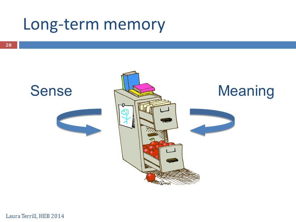 Long-term memory Laura Terrill, HEB 2014 MeaningSense 28