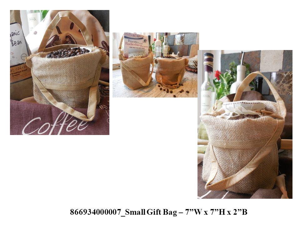 "866934000007_Small Gift Bag – 7""W x 7""H x 2""B"