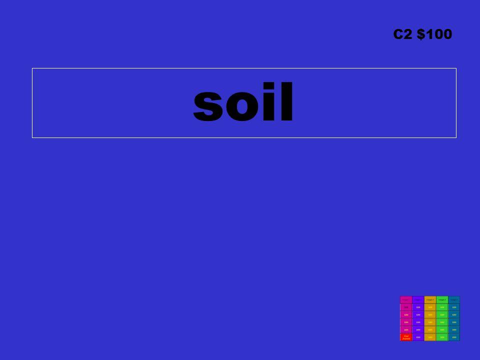 C2 $100 soil