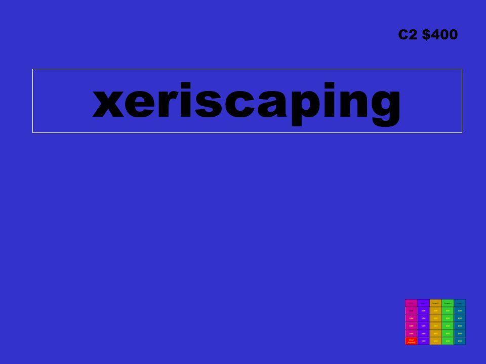 C2 $400 xeriscaping