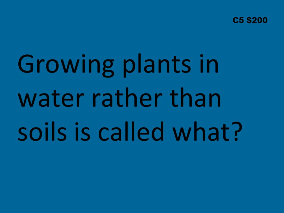 C5 $200 Growing plants in water rather than soils is called what
