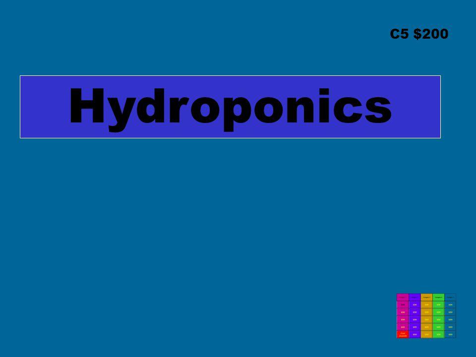 C5 $200 Hydroponics