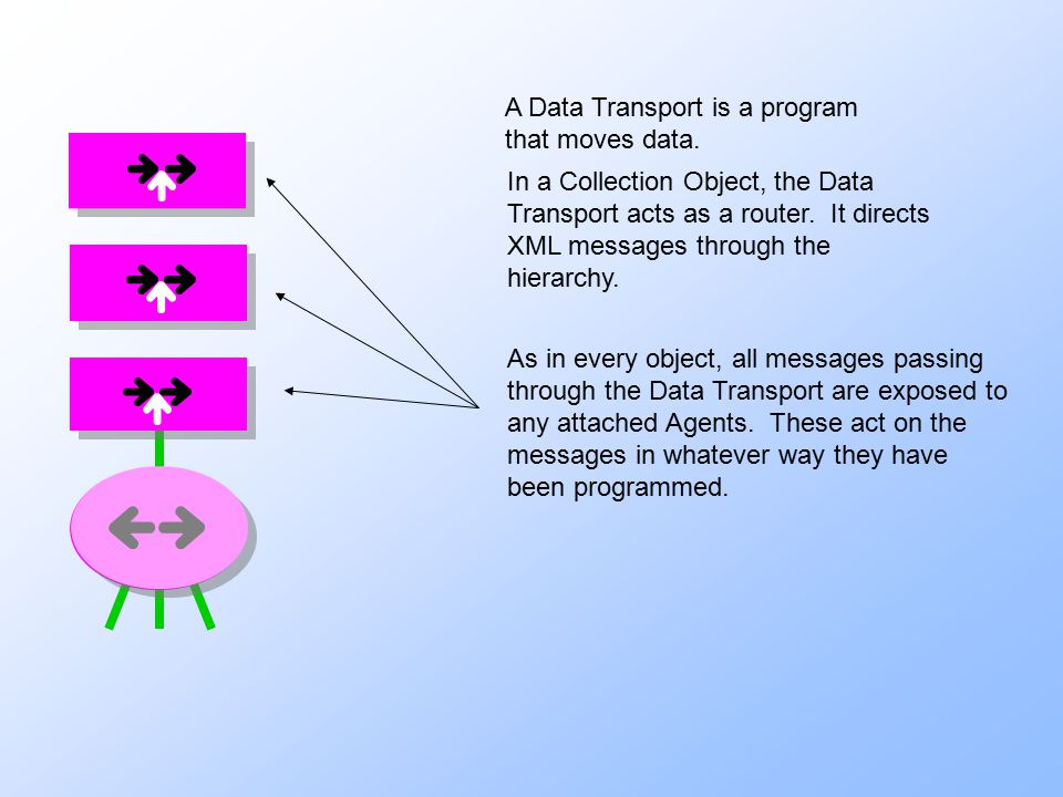 A Data Transport is a program that moves data. In a Collection Object, the Data Transport acts as a router. It directs XML messages through the hierar