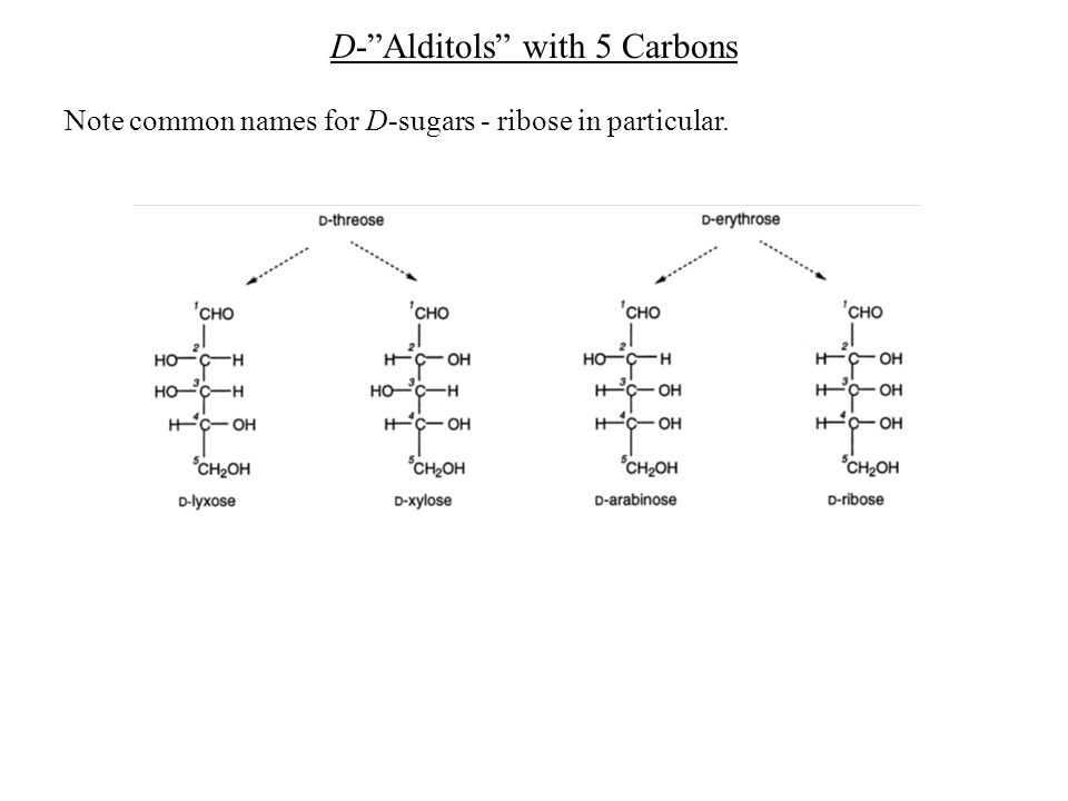 "D-""Alditols"" with 5 Carbons Note common names for D-sugars - ribose in particular."