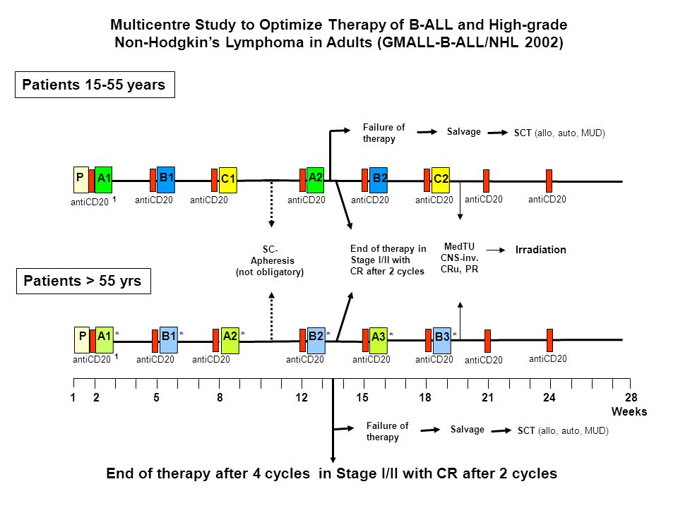 A1 B1P C1 A2 B2 C2 SC- Apheresis (not obligatory) antiCD20 antiCD20 1 Multicentre Study to Optimize Therapy of B-ALL and High-grade Non-Hodgkin's Lymp