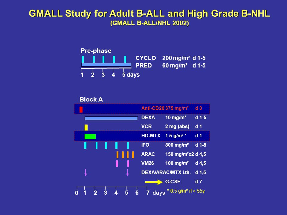 GMALL Study for Adult B-ALL and High Grade B-NHL (GMALL B-ALL/NHL 2002) 12345 days CYCLO200 mg/m²d 1-5 PRED60 mg/m² d 1-5 Pre-phase Block A Anti-CD203
