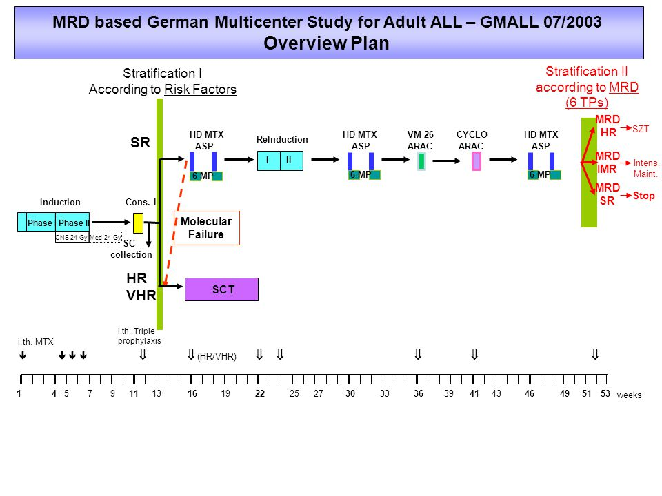 Antigen Surface Expression in Subtypes of Adult ALL and Monoclonal Antibodies Surface SubtypeExpression onAntibodyEvidence antigen>20% LBC*in ALL CD20B-precursor 41%RituximabTrials de novo Mature B-ALL 86%ALL CD52B-/T-lineage 79% / 77%AlemtuzumabTrials de novo ALL CD33B-/T-lineage 23% / 9%GemtuzumabCase reports Ph+ ALL 40% CD19 B-precursor 95% Mature B-ALL 94% CD22B-lineage 17%Epratuzumab *E.Thiel, S.Schwartz, W.D.Ludwig; Central immunophenotyping for GMALL studies