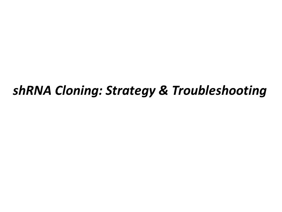 shRNA Cloning: Strategy & Troubleshooting