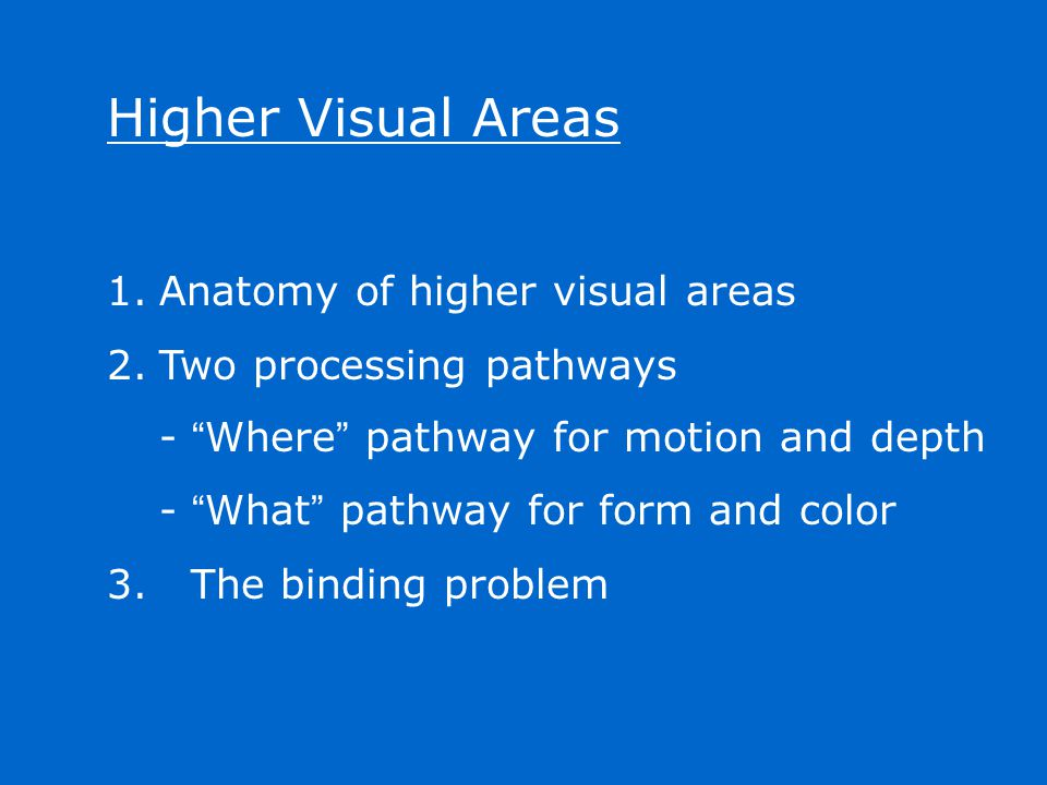 """Higher Visual Areas 1.Anatomy of higher visual areas 2.Two processing pathways - """" Where """" pathway for motion and depth - """" What """" pathway for form an"""