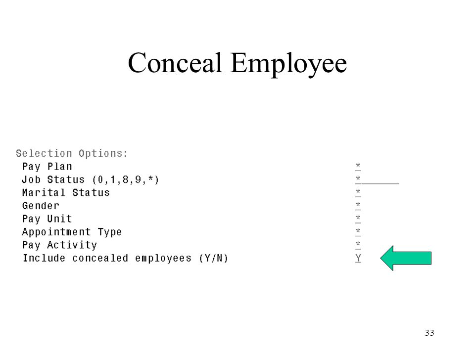 33 Conceal Employee