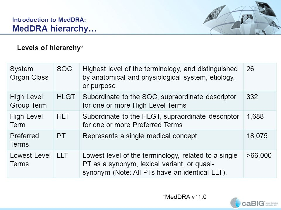 Introduction to MedDRA: MedDRA hierarchy… System Organ Class SOCHighest level of the terminology, and distinguished by anatomical and physiological sy