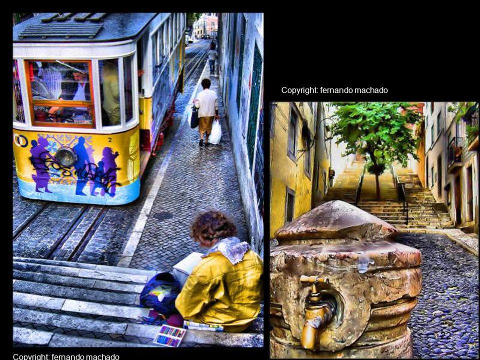Copyright: Carla Nunes 21