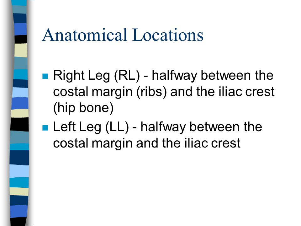 Anatomical Locations n Right Leg (RL) - halfway between the costal margin (ribs) and the iliac crest (hip bone) n Left Leg (LL) - halfway between the