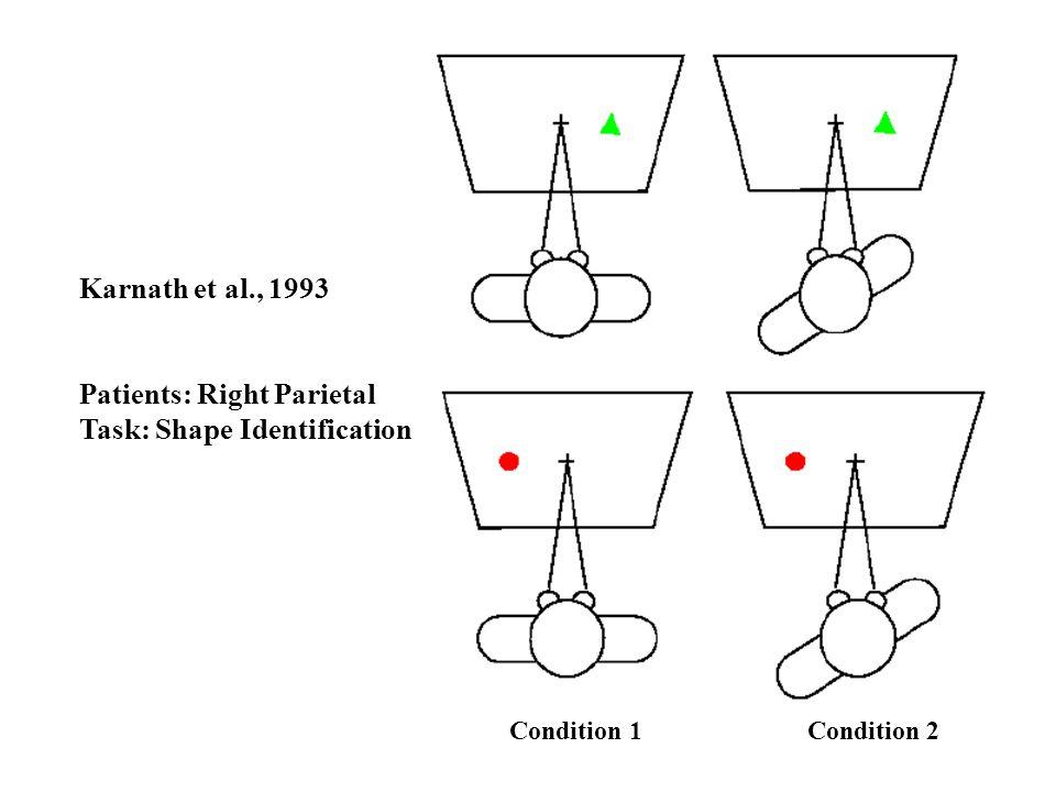 Karnath et al., 1993 Patients: Right Parietal Task: Shape Identification Condition 1 Condition 2